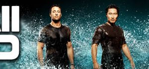 Hawaii Five-0 2010 S08E21 HDTV x264-LOL + 720p HDTV x265-BvS [MEGA]