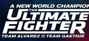 UFC The Ultimate Fighter 27 Finale Prelims HDTV x264-Ebi [MEGA]