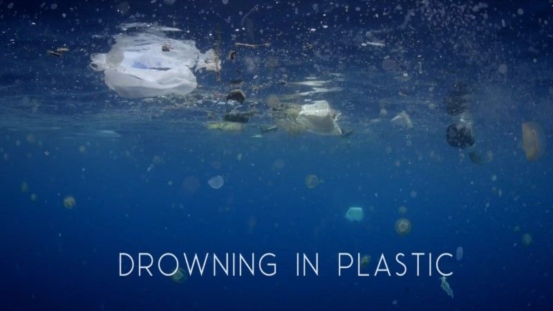 BBC - Drowning in Plastic HDTV x264 AAC