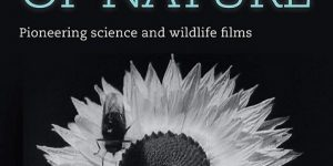 BFI – Secrets of Nature DVD x264 AAC [MEGA]