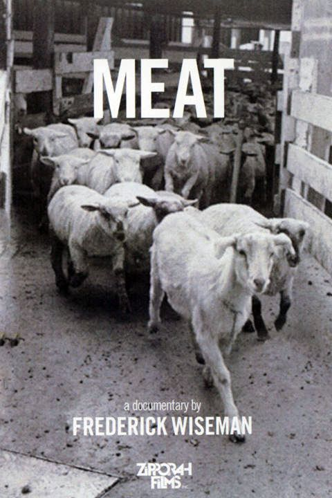 Zipporah Films Meat WEB-DL x264 AAC